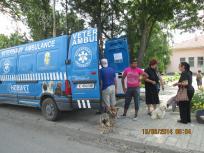 Безплатна кастрация на домашни кучета